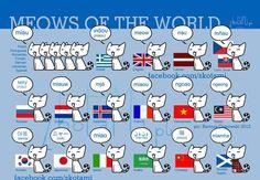 Fun! International meow onomatopoeia