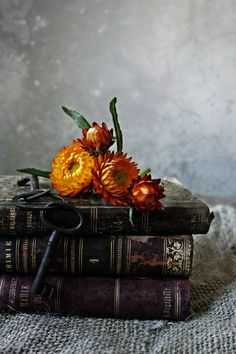 Flowers and old books. © Mónica Pinto