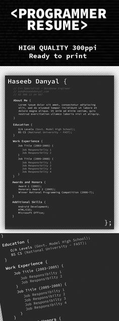 free programmer professional resume template - Professional Resume Format