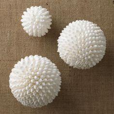 White Shell Balls