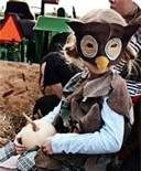 owl costume - Bing Images