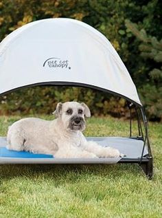 Give your dog a cool shady place to rest while enjoying the outdoors with the Cool Pet Cot Canopy, which quickly and easily attaches to any pet cot bed.