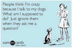 Ecard Quotes. Funny quotes about dogs. People think I'm crazy because I talk to my dogs. What am I supposed to do? Ignore them, when they ask me a question?