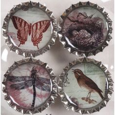 bottle top magnets, put in relevent pics and/or photos ~ gift idea for Ally
