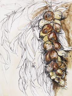 shallots and bay by Natasha Clutterbuck artist