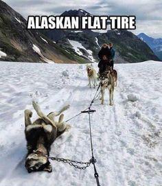 Flat tire in Alaska!