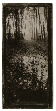 #598 Wet Plate Collodion, Country Roads, Snow, Plates, Gallery, Photography, Outdoor, Licence Plates, Outdoors