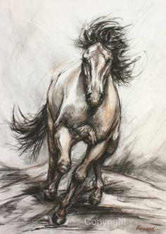 Horse Art- Horse Drawing-Equine Illustration-'Galloping Steed' by FerraroFineArt on Etsy Horse Drawings, Animal Drawings, Art Drawings, Drawing Art, Horse Illustration, Animal Sketches, High Art, Charcoal Drawing, Horse Art