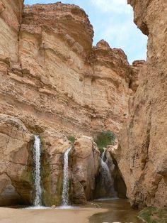 Waterfalls in Tamerza Mountain Oasis, Tunisia (by achakovsky).