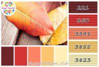 """Gallery.ru / tatami3 - Альбом """"Цветовые палитры для рукодельниц в DMC !"""""""