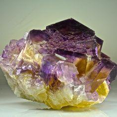 Minerva Fluorite. This and more rare mineral specimens for sale on CuratorsEye.com