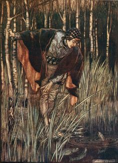 ✽    arthur rackham  -  'the white snake'  -  from 'snowdrop and other tales' by the brothers grimm