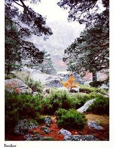 Laguna Negra en Soria, por Donibane #lagunanegra #soria #spain #españa #nature #donibane