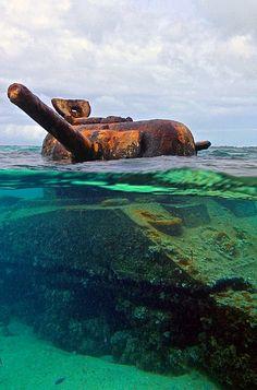 stonedragon1965:  lahoriblefollia:  M4 Sherman  Cool