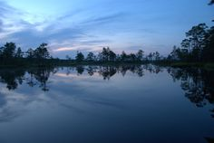 """by Vinayak Hegde CC2 Soomaa National Park is a national park in the south-west of #Estonia, founded on July 10, 1957. Soomaa in translation means """"country of swamps"""". The park area is 398.4 km2 - it is the second largest Estonian national park after Lahemaa. Park Soomaa was created to protect marshes, flowering meadows, forests and winding rivers. What makes this park unique is, so-called, the """"fifth season"""" - the spring flood, which causes the water level to rise to 5 meters. During this…"""
