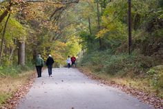 Surrounded by fall colored trees, walkers enjoy the paved bike trail at Ridley Creek State Park, Pennsylvania.