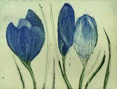 crocuses etching