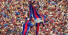 SAN LORENZO #hinchada #fans #ultras #torcida #tifosi  Tanto sentimiento tanto carnaval. Nos hizo gloriosa por la eternidad