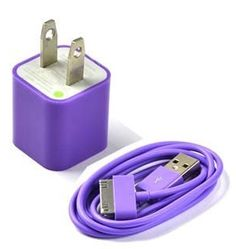 Case Star ® Purple USB Wall Charger + 3Ft USB Charge and Sync Data Cable for iPhone 3G 3GS 4 4S iPod nano iPod touch + Case Star Cellphone Bag