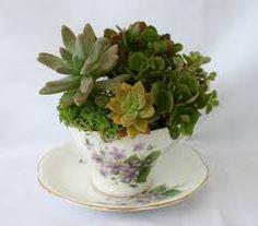 """Képtalálat a következőre: """"virág csészében"""""""