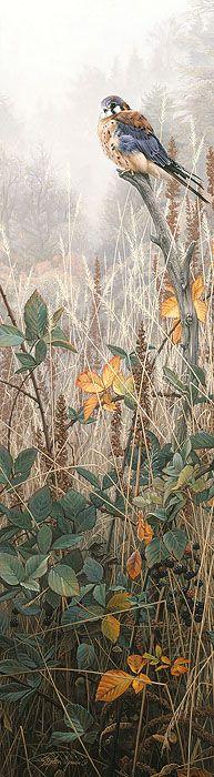 Stephen Lyman - Among the Wild Brambles