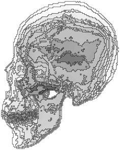 Isochromatic skull # 2  by Tony Karp