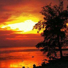 Sunset in ref