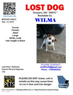 Lost Dog - Terrier - Conyers, GA, United States
