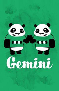 Gemini panda twins