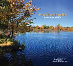 Puzzle Lake Paradise: Grant Mackay - NEW RELEASE! This haven for wildlife is uniquely situated far from highways and towns affording a very quiet ambient noise floor to ensure that the recorded wilderness sounds are extra pristine. NATURE SOUNDS ONLY - NO MUSIC.