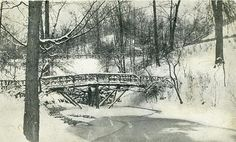 A snowy view of one of the rustic bridges across a stream in a wooded area of the park. Grand Rapids Michigan, Winter Scenes, Bridges, Parks, Rustic, History, Tips, Outdoor, Beautiful