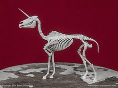 Unicorn Skeleton 3D Print Taxidermy by MythicArticulations on Etsy