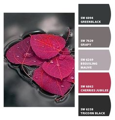 The richness of grays plays nicely with red.  Paint colors from Chip It! by Sherwin-Williams