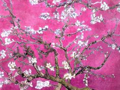 Van Gogh Almond Branches Pink Art Print Poster Posters at AllPosters.com