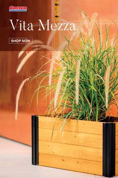 "Crafted with beautiful, sustainably sourced FSC certified cedar, the Mezza collection embraces the timelessness of wood with a modern minimalist twist. The Mezza 12"" x 24"" Planter 2-Pack is perfect for growing herbs or displaying decorative flowers and plants. Shop now at Costco.com."