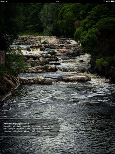 Breathtakingly beautiful rapids a stone's throw away from downtown Helsinki offers a selection of great spots for a picnic - just pick and choose the one for you! Picnic Spot, Stones Throw, Helsinki, Finland, Are You The One, Tasty, River, Dreams, Places