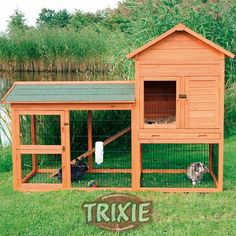 New Honey Do for the Hubs, build this awesomeness! Rabbit Hutch and Run Combo