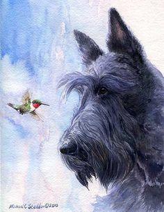 """My Turf"" A Limited Edition Scottish Terrier Print - Michael Steddum"