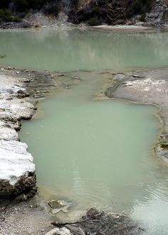 Rotorua Thermal Pool - New Zealand. Great experience. Traveling alone is liberating and adventurous! Go for it!!