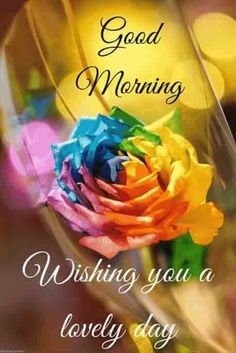 Good Morning Love Pics, Good Morning Wishes Friends, Good Morning Flowers Pictures, Good Morning Beautiful Pictures, Good Morning Nature, Beautiful Morning, Morning Pics, Morning Texts, Morning Blessings