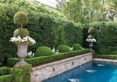 """The Spencer family home - a hedged garden with topiary urns, bordering the pool. Designed by New Orleans Landscape Architect, Rene Fransen.  Located in, The Garden District - New Orleans, Louisiana. ~ Part of the """"Secret Garden Tour"""", with proceeds benefiting the Brain Injury Association of Louisiana. ~ {cwlyons} ~ (Image: Victoria Magazine -- Photographer: Mac Jamieson)"""