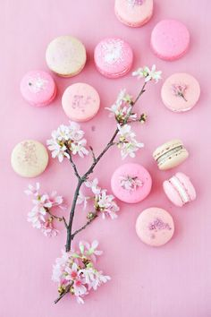 """{Recipe} Cherry Blossom Macarons from Cannelle et Vanille"" on ""anna and blue paperie"" -- Click through for the recipes (macarons and filling) and more gorgeous photos."