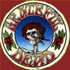 I can't begin to describe how incredible this concert was.... Saw the Grateful Dead at Soldier Field in Chicago. My favorite concert ever!
