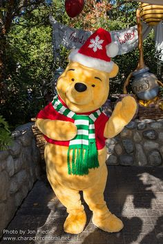 Winnie the Pooh & Christmas too!