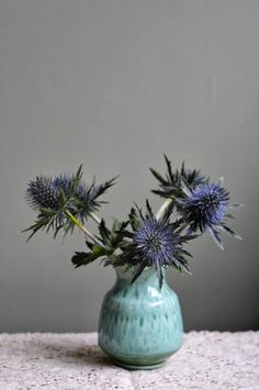 at home with red: Still Life - Thistle Study