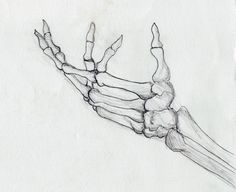 skeleton hand side view - Google Search