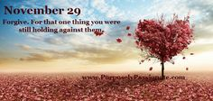 November 29