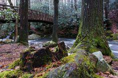 Jones Gap State Park, South Carolina | Community Post: 20 Pretty Awesome State Parks