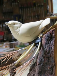 WIP, Red-breasted Nuthatch wood carving by Michael Willard, Marquette, MI. Roughed out and ready for detail work.