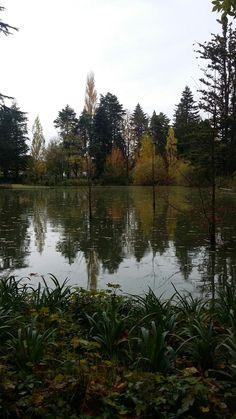 #nature#mirrorlandscape#beautifullandscape